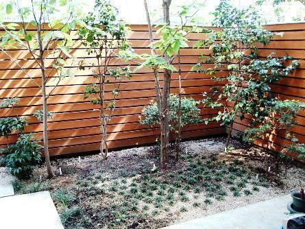 西小岩の家の庭